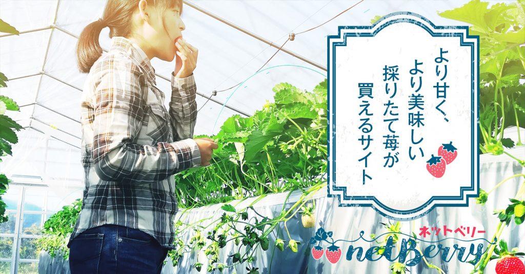 より甘く、より美味しい 採りたて苺が買えるサイト